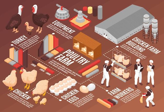 Izometryczny schemat blokowy plakatu z kurczakiem fermy drobiu ze sprzętem do produkcji jaj mięsnych pracownicy farmy budynki ilustracji ptaków