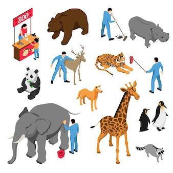 Izometryczny zestaw różnych zwierząt i pracowników zoo podczas aktywności zawodowej na białym tle