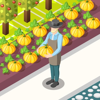 Izometryczny żywności ekologicznej
