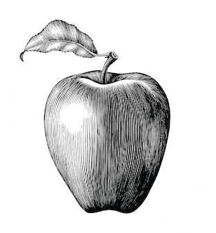 Jabłczana owocowa rysunkowa rocznik klamerki sztuka odizolowywająca na białym tle