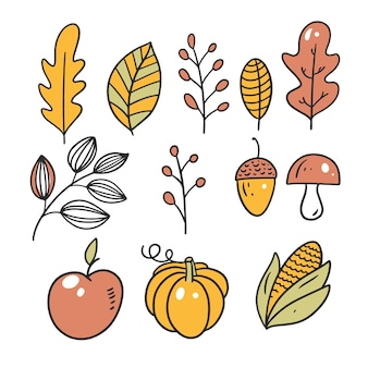 Jabłko Dyni, Orzechy I Liście Premium Wektorów