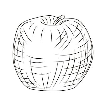 Jabłko w stylu grawerowanym na białym tle. vintage szkic zarys owoców z bliska. projekt ilustracji wektorowych