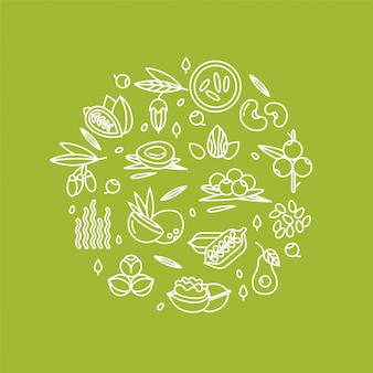 Jagody, orzechy, warzywa owoce i nasiona ilustracja