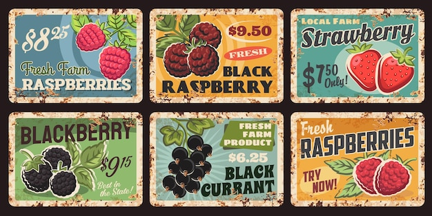 Jagody, owoce rynku żywności metalowe zardzewiałe talerze i karty cenowe, plakaty retro wektor. farm garden zbiór czarnych malin, truskawek, jeżyn i porzeczek, blachy z rdzą
