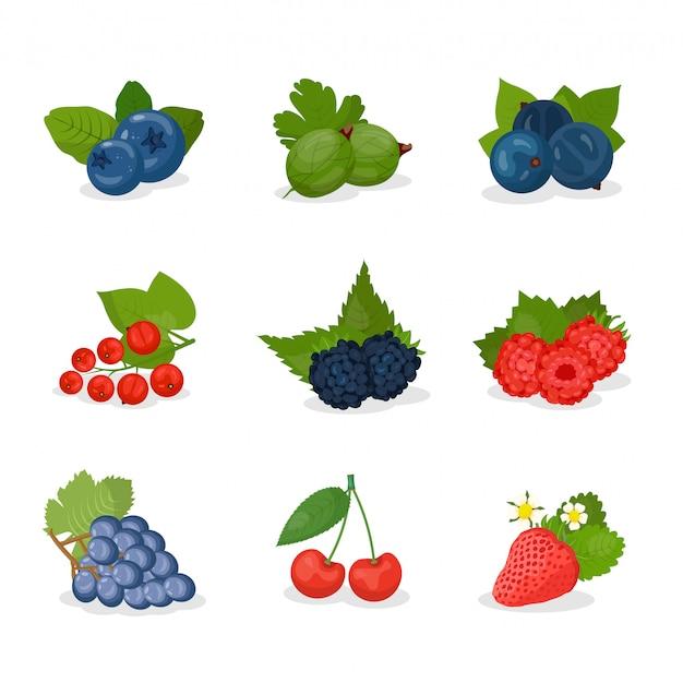 Jagody, zestaw ilustracji owoców