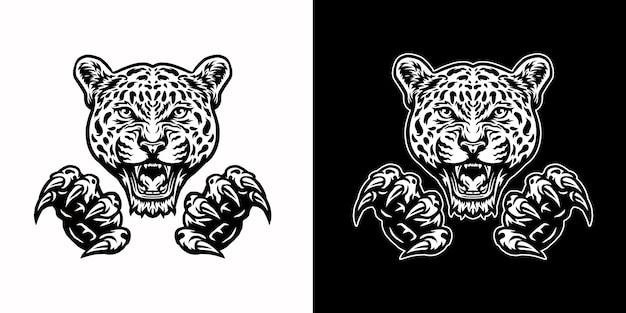 Jaguary i pazury, na białym tle