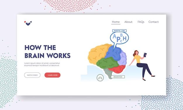 Jak działa mózg szablon landing page. drobna postać kobieca z książką w ogromnym ludzkim mózgu oddzielone na kolorowe części i pracy płata ciemieniowego, koncepcja medycyny. ilustracja kreskówka wektor