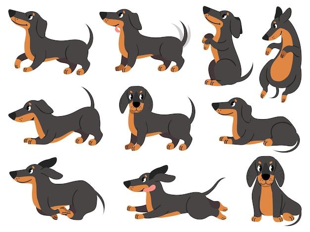 Jamnik. słodkie psy postacie różne pozy rasy myśliwskiej, projektowanie nadruków, tekstyliów lub kart, urocza kreskówka jamnik wektor zestaw. poza jamnik, rysunek rodowodu psa, ilustracja zwierząt domowych