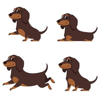Jamnik w różnych pozach. zestaw ślicznych zwierząt domowych w stylu cartoon.
