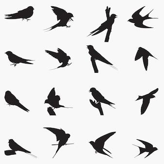Jaskółki, ptaki, sylwetki wektorowe