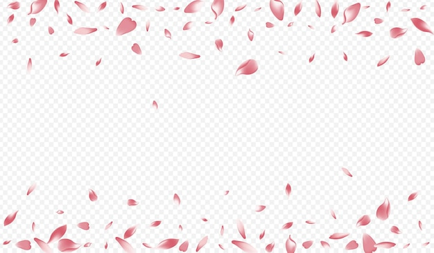 Jasna brzoskwinia wektor przezroczyste tło. kwitnąca romantyczna karta. lotos spadający plakat. kwiat piękna tło. białe jabłko japonia gratulacje.