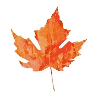 Jasne akwarela malowane artystyczne pomarańczowy czerwony akwarela klon liść wektor ilustracja na białym tle. jesienne liście element projektu jesiennego.