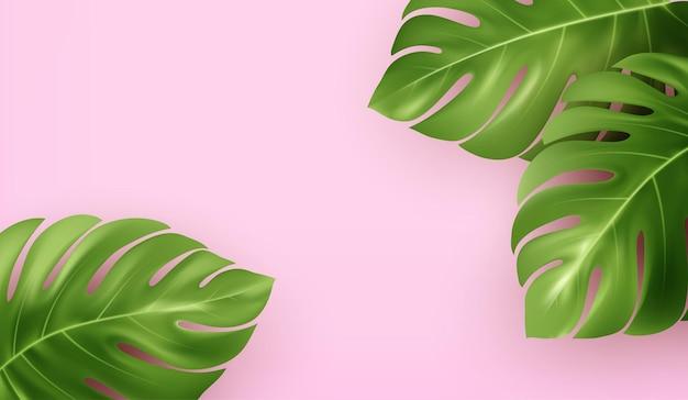 Jasne różowe lato tło z tropikalnymi realistycznymi liśćmi monstera.