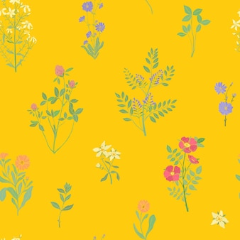 Jasny kolorowy wzór z przepięknymi dziko kwitnącymi kwiatami