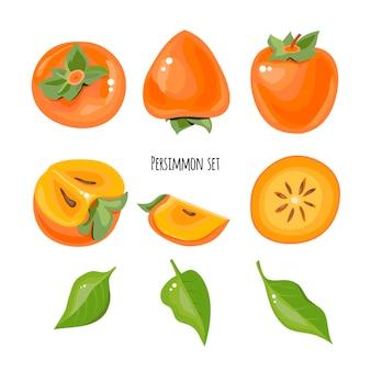 Jasny zestaw ilustracji soczyste persimmons