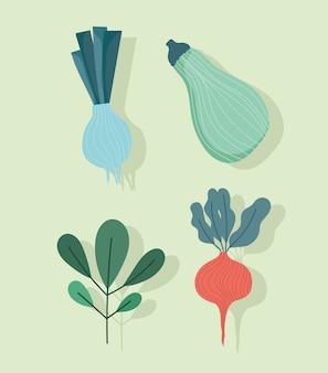 Jedzenie dynia zielona cebula rzodkiewka i natura pozostawia ikony ilustracja