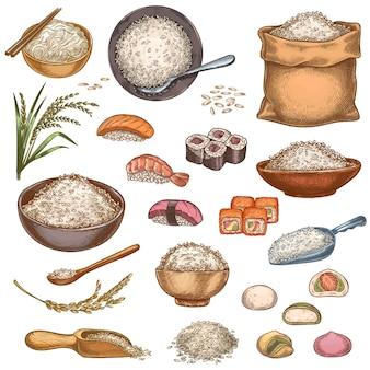 Jedzenie ryżu. ręcznie rysowane azjatyckie dania sushi rolls, mochi, miska owsianki i makaron. worek i stosy ziaren ryżu. wektor zestaw kuchni japońskiej. zdrowe i ekologiczne produkty z rybami lub owocami morza