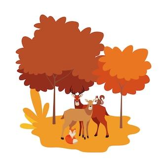 Jelenie lisy i zwierzęta wiewiórki w naturalnym krajobrazie