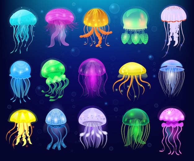 Jellyfish vector ocean jelly-fish lub sea galaretki i podwodne pokrzywy lub meduzy ilustracja zestaw egzotycznych galaretowatych świecące meduzy lub ryby w morzu