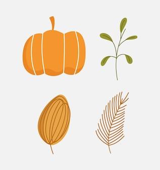 Jesień liść dyni oddział liści natura ikony