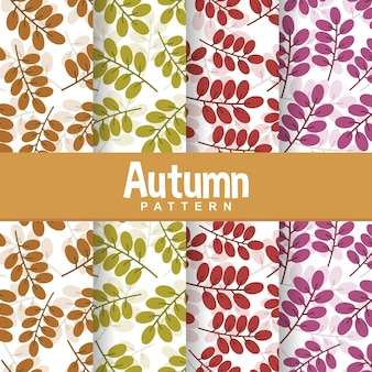 Jesień liść gałąź liść wzór