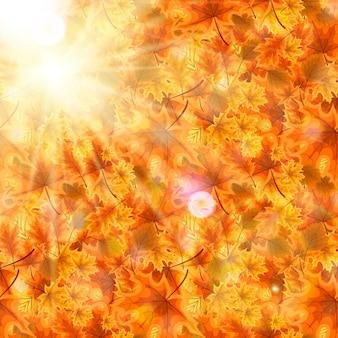 Jesień pomarańczowy i czerwony opadłych liści... ilustracja wektorowa. eps10