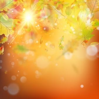 Jesień streszczenie tło. szablon gładkie światło ciepłe słońce.