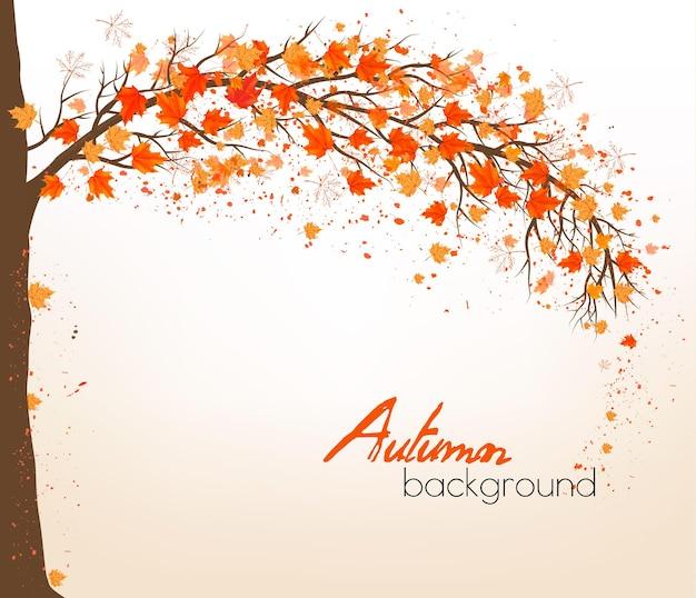 Jesień streszczenie tło z kolorowych liści. wektor