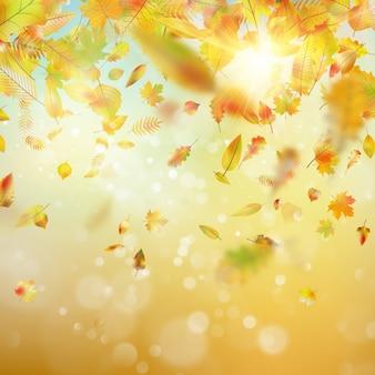 Jesień tło z liśćmi. a także zawiera