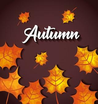 Jesień z dużą ilością liści