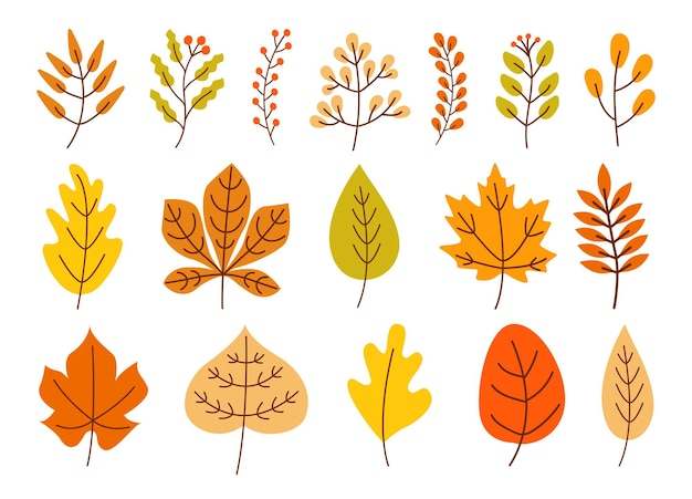 Jesień zestaw kolorowych opadłych liści i jagód na białym tle