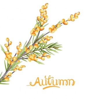 Jesieni jagod żółta gałąź z zielonymi liśćmi