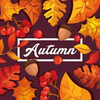 Jesieni tło z liśćmi i dokrętkami owocowymi