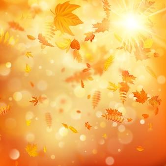Jesieni tło z naturalnymi liśćmi i jaskrawym światłem słonecznym.