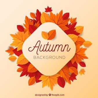 Jesieni tło z płaskimi liśćmi