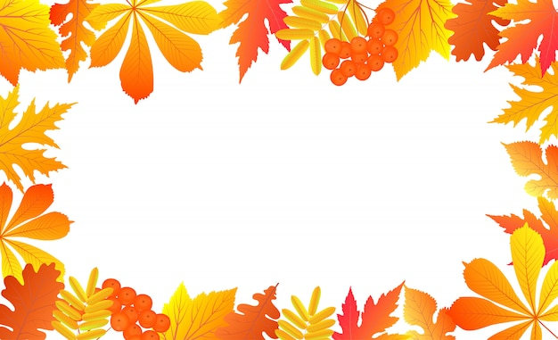 Jesieni tło z spada liśćmi i jagodami jarzębiny.