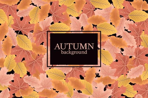 Jesieni tło z spadków liśćmi