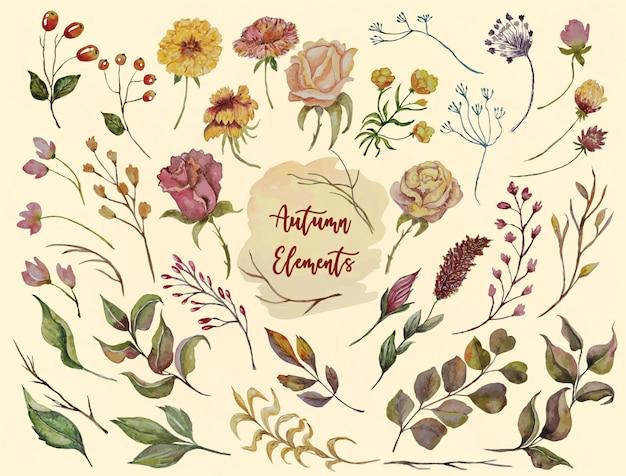 Jesienna akwarela zestaw z kwiatów i liści