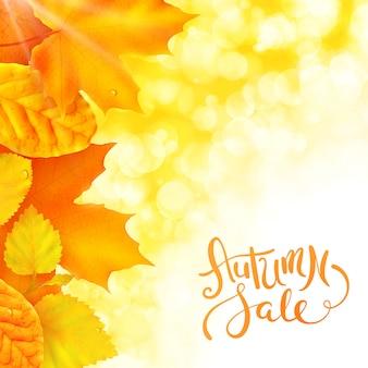 Jesienna wyprzedaż na kwadratowy baner