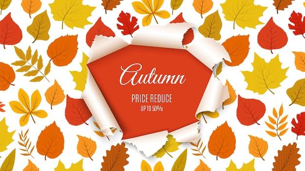 Jesienna wyprzedaż transparent. spadek lasu liści z papierowym tłem dziury. sezonowy rabat, plakat promocyjny lub szablon ulotki. ilustracja wektorowa projekt natura listopada. baner jesienno-jesienny