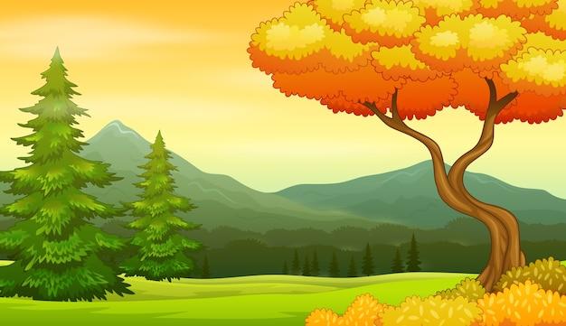 Jesienne drzewo na tle pięknego krajobrazu
