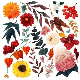 Jesienne elementy kwiatowe spadają ręcznie rysowane wektor ogrodu