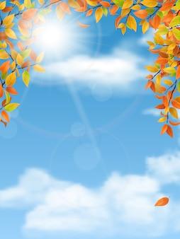 Jesienne gałęzie drzew na tle nieba