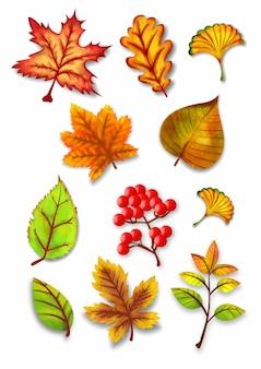 Jesienne liście akwarela wektor zestaw ilustracji