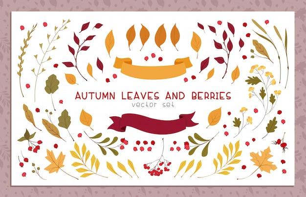Jesienne liście i jagody płaskie ilustracje wektorowe zestaw