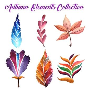Jesienne liście kolekcja