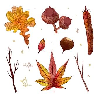 Jesienne liście lasu, rysunek