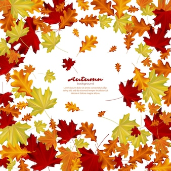 Jesienne liście na białym tle.
