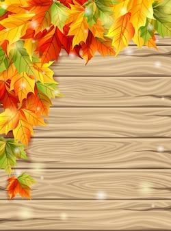 Jesienne liście na tle desek tło, liście klonu w jasnych kolorach