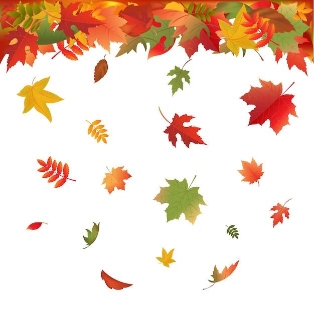 Jesienne liście spadające na białym tle